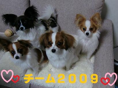 チーム2009.jpg